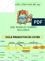 Alimentacion Cuyes Clases