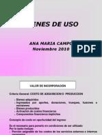 Bienes de Uso2010
