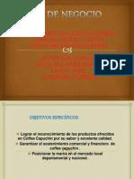 Diapositivas Plan de Negocio