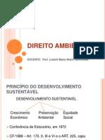 1 Aula - Direito Ambiental. Conceitos e Principios