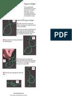 Knots Figure Eight
