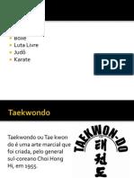 Taekwondo Slide Lindo (1) (1)