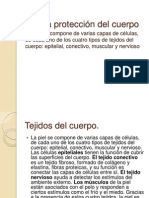 piel-100703202139-phpapp01