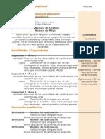 Curriculum Vitae Modelo4c Naranja