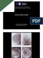 Ciclo Celular y Regulacion Modo de Compatib