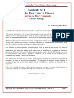 Apuntes Para Tercera Camara Alfonso Arteaga