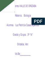 36705190 Niveles de Organizacion de La Materia