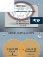 partoendiferentestiposdepelvis-130128023343-phpapp02