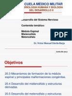 Sistema Nervioso EMM 2012