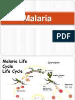 K24 Baru Kuliah Malaria Blok Tropmed
