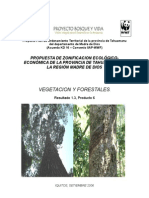 6_Vegetación y forestal