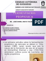 fermentacion propionica 2