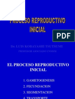 GAMETOGENESIS IMPLANTACION