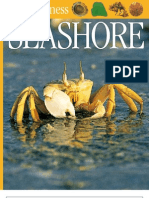 Ebookforchildren Baby Seashore