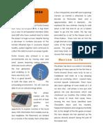 Pta Gruesa 092 - Chatty Report