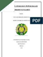 Audit Usaha Perkebunan Karet