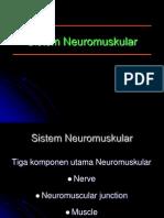 Neuro muscular