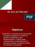 LeisMendel - Cópia