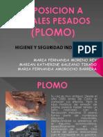 Exposicion a Metales Pesados (Plomo)