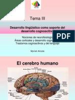 Desarrollo lingüístico_Myriam