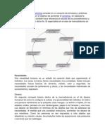 Mezcla de Marketing 4p