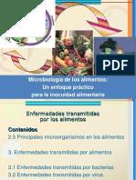 Bacterias, Virus y Hongos