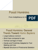 Fossil Hominins