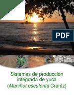 1. Conferencia Integral Yuca Para Yopal 2013