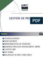 Resumen PAE Procesos