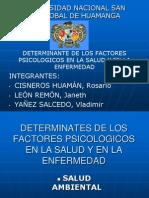Detrminantes de Los Factores Psicologicos s y e