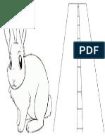 Conejo y Carretera