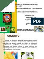 TEMA CULTIVOS Y ALIMENTOS GENÉTICAMENTE MODIFICADOS. diapositivas. 8.8