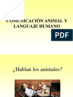 Animal Communication vs Human Language