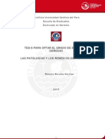 MORALES_HERVIAS_ROMULO_PATOLOGIAS_CONTRATO.pdf