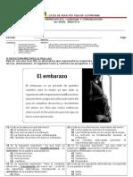 CONTROL FORMATIVO nº2 LENG 3er nivel A.doc