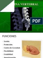 Anatomia de Column A