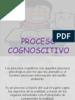 PROCESO COGNOSCITIVO.pdf