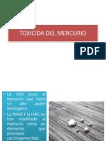 Toxicida Del Mercurio Expo
