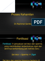 tahap - tahap proses kehamilan