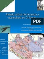 Estado Actual de La Pesca y La Acuacultura Velazquez-Web