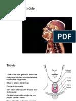 tiroide - ineses e joana