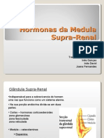 Medula Supra Renal - Ineses e Joana