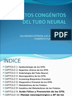 Defectos Congenitos Del Tubo Neural