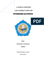 TI Raynaud Xan 3 K