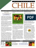 El Chile en mesoamerica; diccionario