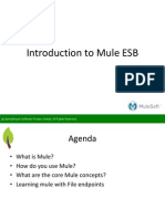 SpringPeople Introduction to Mule ESB