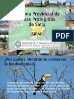 Resumen Areas Protegidas