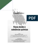 caderno2 risco quimico.docx