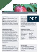 Informacion Nutricional de La Manzana
