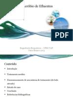 Apresentação Eng Bioquímica
